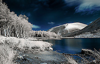 Infrared Image of Glentanassig Woods, Co.Kerry