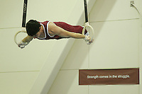 7 October 2005: A men's gymnastics sign during gymnastics practice at the Ford Center in Stanford, CA.