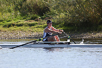 Race: 180  W.MasC/D.1x   [234]Cantabrigian - CAB-Auty-Jacklin (D)  vs [235]Stratford-upon-Avon BC - SUA-Goodwin (C) <br /> <br /> Ross Regatta 2017 - Monday<br /> <br /> To purchase this photo, or to see pricing information for Prints and Downloads, click the blue 'Add to Cart' button at the top-right of the page.