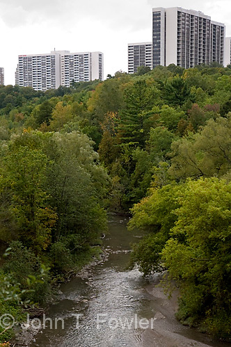Inner city Don Valley Ravine, Toronto, Ontario<br />