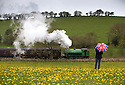 2016_05_02_bank_holiday_steam