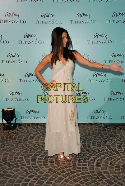 ROSELYN SANCHEZ.Attends Tiffany & Co. celebration for the launch of Frank Gehry?s premier collection held at Tiffany & Co. on Rodeo in Beverly Hills, California, USA, March 26, 2006..full length white dress.Ref:DVS.www.capitalpictures.com.sales@capitalpictures.com.Supplied By Capital PIctures