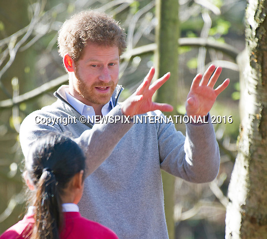 15.03.2017; Epping, UK: PRINCE HARRY<br />visited Epping Forest to view the Wood Pasture Restoration Project which is part of The Queen's Commonwealth Canopy (QCC).&nbsp;<br /> The QCC is a conservation initiative which aims to create a global network of indigenous forests to be preserved in perpetuity to mark Her Majesty's lifetime of service to the Commonwealth.<br /> &nbsp;Mandatory Photo Credit: &copy;Francis Dias/NEWSPIX INTERNATIONAL<br /><br />IMMEDIATE CONFIRMATION OF USAGE REQUIRED:<br />Newspix International, 31 Chinnery Hill, Bishop's Stortford, ENGLAND CM23 3PS<br />Tel:+441279 324672  ; Fax: +441279656877<br />Mobile:  07775681153<br />e-mail: info@newspixinternational.co.uk<br />Usage Implies Acceptance of OUr Terms &amp; Conditions<br />Please refer to usage terms. All Fees Payable To Newspix International