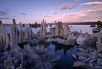 SUNSET colors & TUFA make for a strange landscape at MONO LAKE'S SOUTH TUFA GROVE in this National Scenic Area