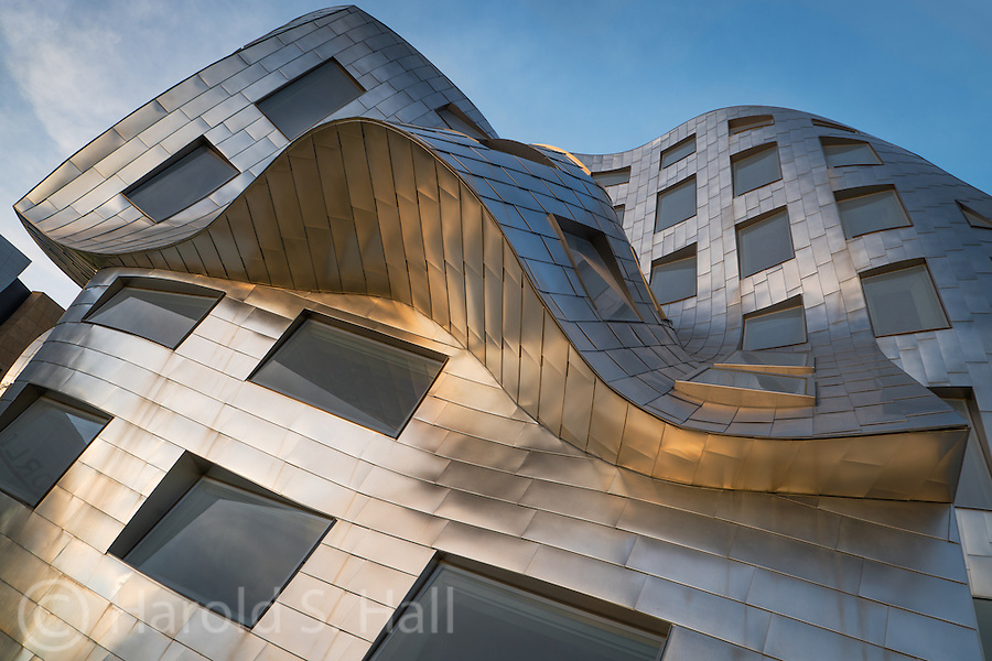 Cleveland Clinic's Lou Ruvo Center for Brain Health in Las Vegas, Nevada was design by world-renowned architect Frank Gehry.