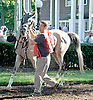 Front Rowe before The Delaware Park Arabian Juvenile Championship (grade 3) at Delaware Park on 9/27/14