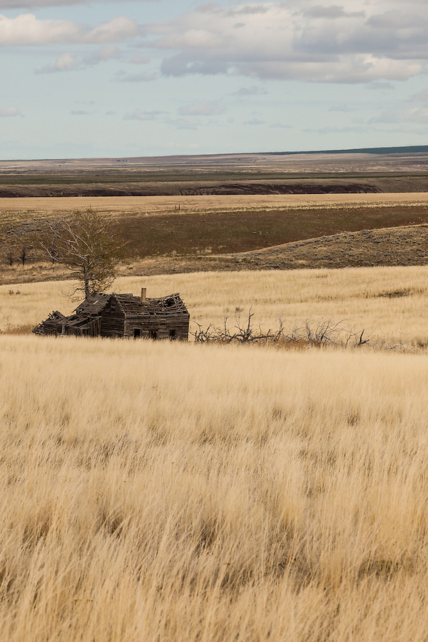 An abandoned house is seen along the Carter Hill Road in Mayville, Oregon in Gilliam County.