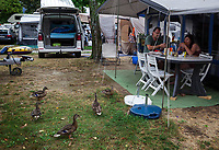 Switzerland. Canton Ticino. Tenero. Camping Campofelice. Family's breakfast with ducks. A campervan (or camper van), sometimes referred to as a camper, or a caravanette, is a self-propelled vehicle that provides both transport and sleeping accommodation. A motorhome (or motor coach is a type of self-propelled recreational vehicle (RV) which offers living accommodation combined with a vehicle engine. Motorhomes are part of the much larger associated group of mobile homes which includes caravans, also known as tourers, and static caravans. A caravan, travel trailer, camper or camper trailer is towed behind a road vehicle to provide a place to sleep which is more comfortable and protected than a tent. It provides the means for people to have their own home on a journey or a vacation. Campers are restricted to designated sites for which fees are payable. 21.07.2018 © 2018 Didier Ruef