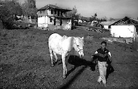 Kosovo   Novembre 2000.Pe? (in albanese Pejë / Peja; in serbo Pe?).zona di Mahala e Bates.Un bambino di etnia rom porta il cavallo al pascolo