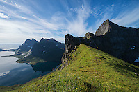 View over grassy mountain pass towards Reinefjord and surrounding mountains, Moskenesøy, Lofoten Islands, Norway