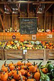 USA, Oregon, Bend, pumpkins and squash for sale at the annual pumpkin patch located in Terrebone near Smith Rock State Park