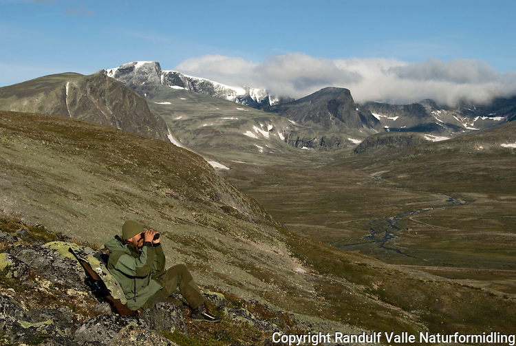 Mann speider etter villrein ---- Man looking for reindeer