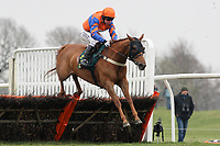 Mangonel ridden by Colin Bolger jumps in the North Norfolk Radio Selling Hurdle