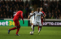 Pictured: (L-R) Kolo Toure, Wayne Routledge.<br />