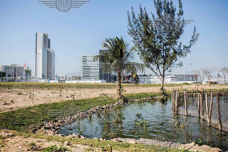 The waters of Lagoa da Jacarepagua, polluted with raw sewage, beside the media centre and Olympic Park.