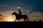 October 05 2018 : Horses train at Keeneland Racecourse on October 05, 2018 in Lexington, Kentucky. Evers/ESW/CSM
