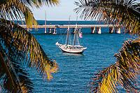 US, Florida Keys. Bahia Honda State Park. The new Bahia Honda Bridge.