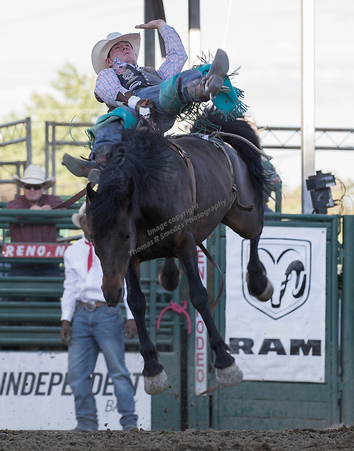 Jake Stemo rides in the Bareback Bronc Riding event during the Reno Rodeo on Sunday, June 23, 2019.