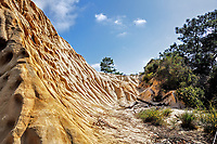 A sandstone hillside eroded by wind and water at Torrey Pines Park, near San Diego, CA.