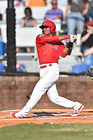 Johnson City Cardinals shortstop Allen Cordoba (50) swings at a pitch during a game against the Elizabethton Twins at Howard Johnson Field at Cardinal Park on June 26, 2016 in Johnson City, Tennessee. The Twins defeated the Cardinals 13-12. (Tony Farlow/Four Seam Images)