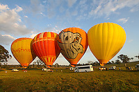 20141005 October 05 Hot Air Balloon Gold Coast