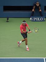 Del Potro Backhand US Open 2013