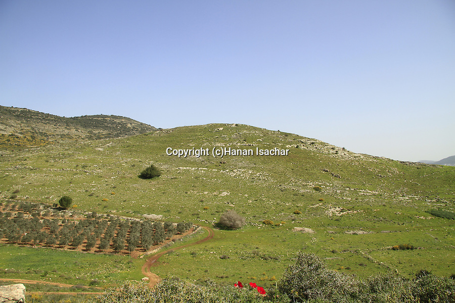 Israel, Lower Galilee, Hurvat Cana site of Ancient Cana overlooking Beit Netofa valley
