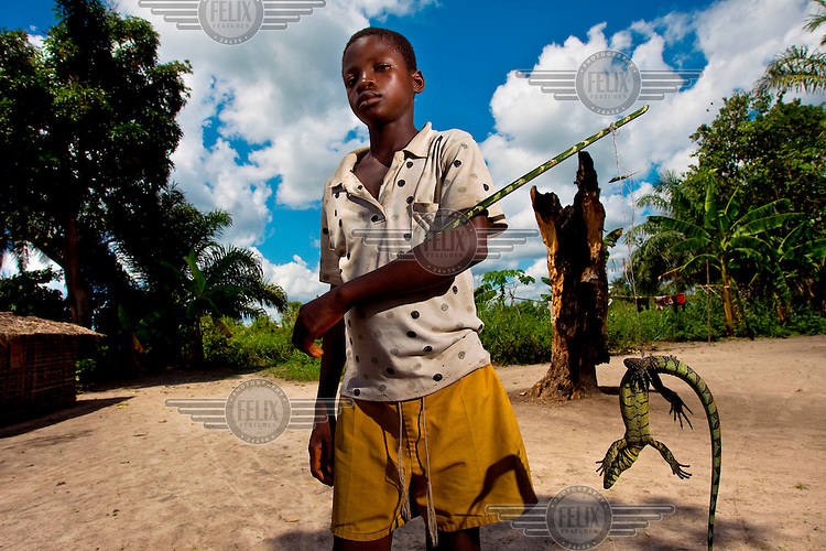 In the small village of Lieki on the Lomami river, a boy carries his latest catch, a lizard he will eat.