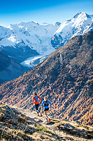 Two women trail running on Piz Languard, above Pontresina, Switzerland during fall colors. In the background is the Piz Bernina and Morteratsch Glacier.