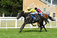 Winner of The AJN Steelstock Cecilia Hall Handicap Itkaann r(yellow) ridden by David Probert and trained by Owen Burrows during Horse Racing at Salisbury Racecourse on 9th August 2020