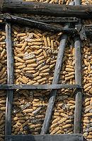 Europe/France/Aquitaine/64/Pyrénées-Atlantiques/Ledueix: Séchoir à maïs