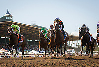 ARCADIA, CA - APRIL 08: First time past the grandstand in the Santa Anita Oaks at Santa Anita Park on April 08, 2017 in Arcadia, California.  (Photo by Zoe Metz/Eclipse Sportswire/Getty Images)