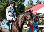 Swamp Rat in the post parade as Opry (no. 8) wins the With Anticipation  Stakes (Grade 3), Aug. 29, 2018 at the Saratoga Race Course, Saratoga Springs, NY.  Ridden by  Javier Castellano, and trained by Todd Pletcher, Opry finished 1 1/2 lengths in front of Somelikeithotbrown (No. 7).  (Bruce Dudek/Eclipse Sportswire)