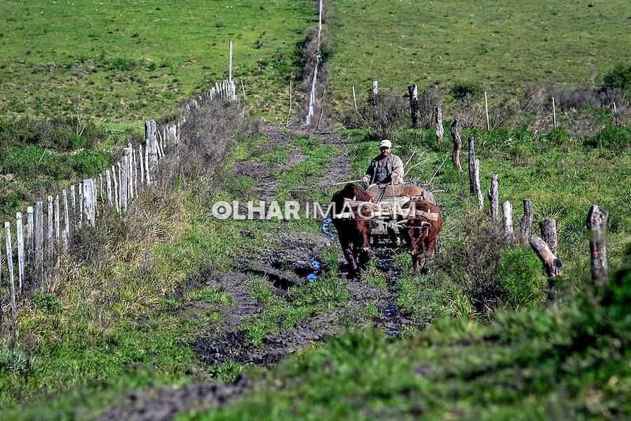 Gaucho em carro de boi na planice do pampa. Candiota. Rio Grande do Sul. 2009. Foto de Ubirajara machado.
