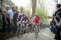 Jasper Stuyven (BEL/Trek Factory Racing) & Romain Zingle (BEL/Cofidis) side by side up the Taaienberg<br /> <br /> 57th E3 Harelbeke 2014