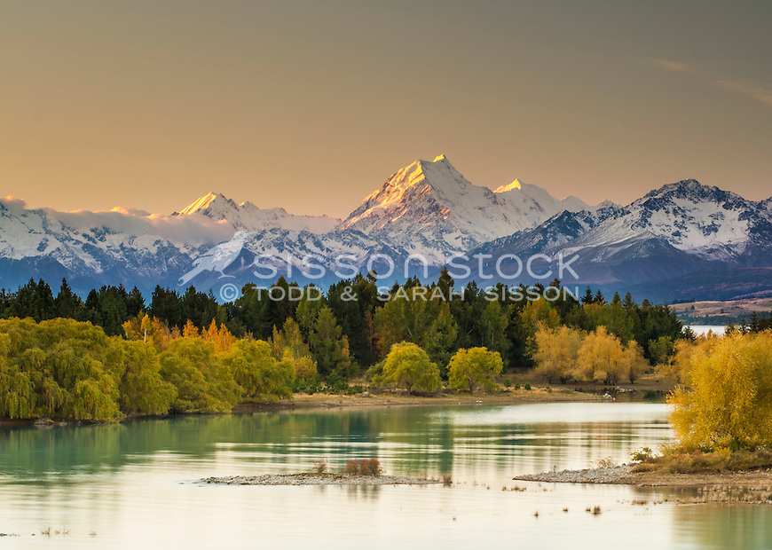 Sunset image of vivid Autumn colours on the shores of Lake Pukaki. Aoraki Mt Cook towering in background. Mackenzie Country, South Canterbury South Island New Zealand.