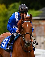 Jazaalah ridden by Dane O'Neil goes down to the start of the Sorvio Insurance Maiden Fillies' Stakes, during Afternoon Racing at Salisbury Racecourse on 7th August 2017