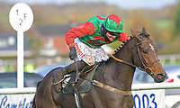 Winner of The Revived Inns Novices' Handicap Chase Crossley Tender ridden by Nick Scholfield and trained by Paul Henderson during Horse Racing at Plumpton Racecourse on 4th November 2019