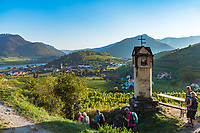Oesterreich, Niederoesterreich, Kulturlandschaft Wachau - UNESCO Weltkultur- und Naturerbe, Spitz an der Donau: Weinort am linken Donauufer mit der spaetgotischen Pfarrkirche St. Mauritius - Bildstock am Wanderweg zum Roten Tor oberhalb von Spitz | Austria, Lower Austria, Wachau Cultural Landscape - UNESCO World's Cultural and Natural Heritage, Spitz an der Donau: wine village on the left bank of the Danube with parish church Saint Mauritius - shrine alongside hiking path above Spitz
