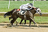 Separate Checks winning at Delaware Park on 6/29/11