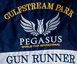 HALLANDALE BEACH, FL - JANUARY 25: during morning workouts as horses prepare for the Pegasus World Cup Invitational at Gulfstream Park Race Track on January 25, 2018 in Hallandale Beach, Florida. (Photo by Scott Serio/Eclipse Sportswire/Breeders Cup)