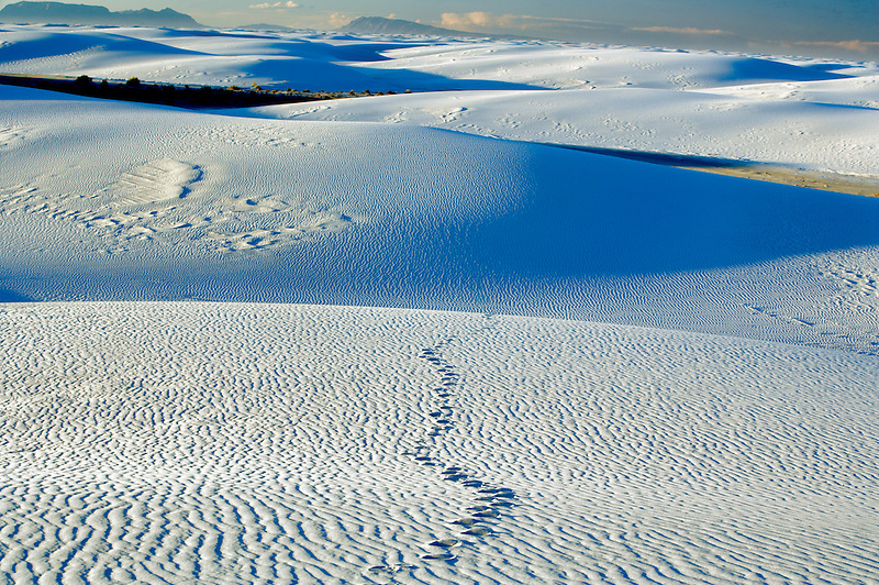 Footprints in sand. White Sands National Monument. New Mexico