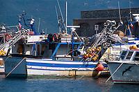 Italien, Elba, Hafen von Marina di Campo