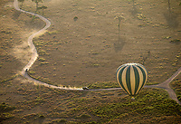 One of the highlights of this trip was a hot air balloon ride over the Serengeti. Here, our support vehicles chase after our balloons, trying to keep pace in order to meet us at our landing point.