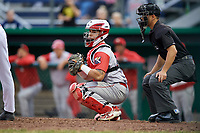 Williamsport Crosscutters catcher Rafael Marchan (13) in front of home plate umpire Steven Rios during a game against the Batavia Muckdogs on June 22, 2018 at Dwyer Stadium in Batavia, New York.  Williamsport defeated Batavia 9-7.  (Mike Janes/Four Seam Images)