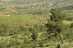 Israel, Upper Galilee, a view at Achihood forest