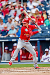26 February 2019: St. Louis Cardinals infielder Drew Robinson at bat during a Spring Training game against the Washington Nationals at the Ballpark of the Palm Beaches in West Palm Beach, Florida. The Cardinals defeated the Nationals 6-1 in Grapefruit League play. Mandatory Credit: Ed Wolfstein Photo *** RAW (NEF) Image File Available ***