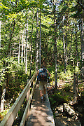 A hiker ascending the Jewell Trail during the summer months. Located in the White Mountains, New Hampshire USA