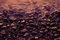 Ili ili (water washed stones) on the south Kohala coast, like those used in spa treatments