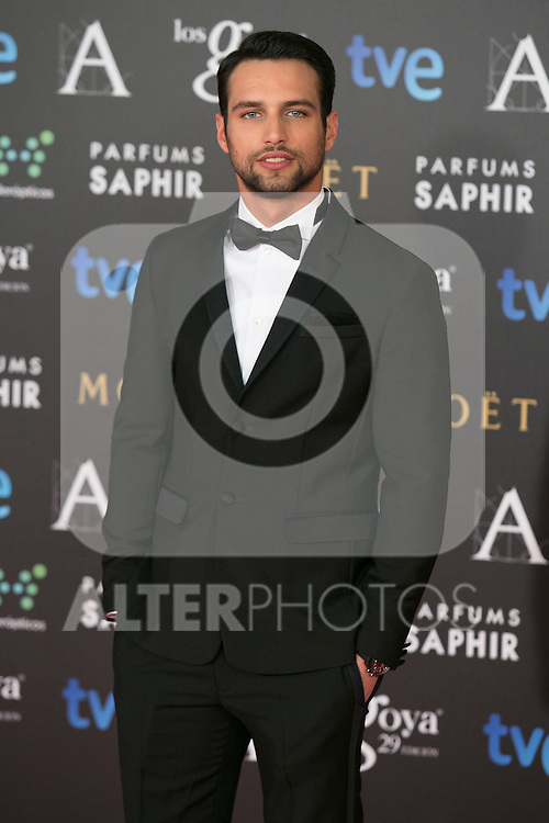 Jesus Castro attend the 2015 Goya Awards at Auditorium Hotel, Madrid,  Spain. February 07, 2015.(ALTERPHOTOS/)Carlos Dafonte)
